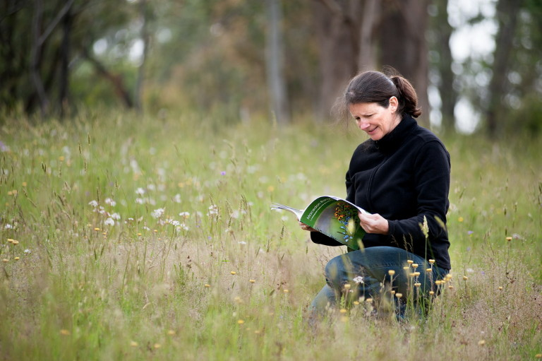 Woodend Landcare Treasurer Kate Daniel identifying precious grasslands for protection.