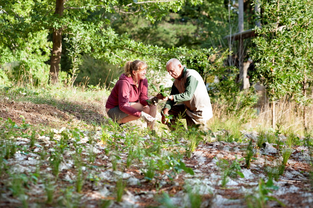 The new President of Woodend Landcare Krista Patterson - Majoor seen here with former President Peter Yates examining some plantings along Five Mile Creek.©Scheltema
