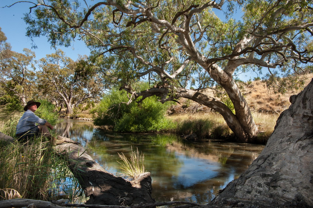 "Robert Pearse from Langley Landcare ""Our long term vision is to create biolinks along the several creeks that rise in the foothills of Black Hill and rundown into the Campaspe River,seen here""."