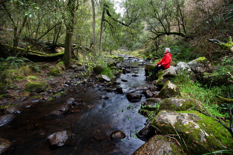 "Trentham Landcare member Gael Elliott is seen here on the Coliban River.""The rivers are the lifeblood of our environment and we need to nurture them.We need to respect the rivers and Landcare can act as a conduit in this process."" said Gael.©Scheltema"