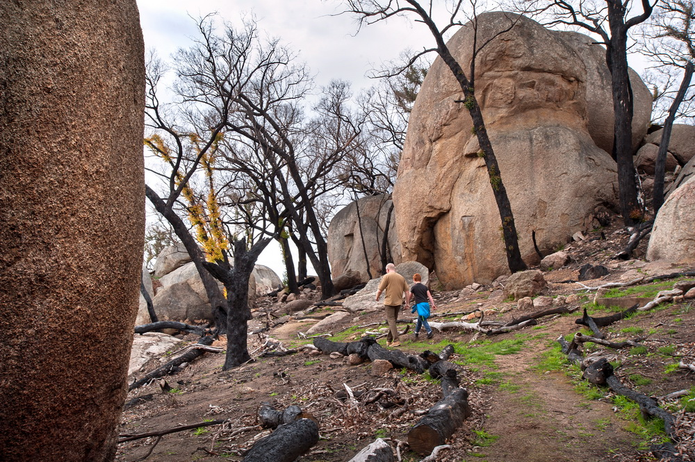 Visitors can once again enjoy the granite boulder country of Black Hill Reserve after it was recently reopened.©Scheltema
