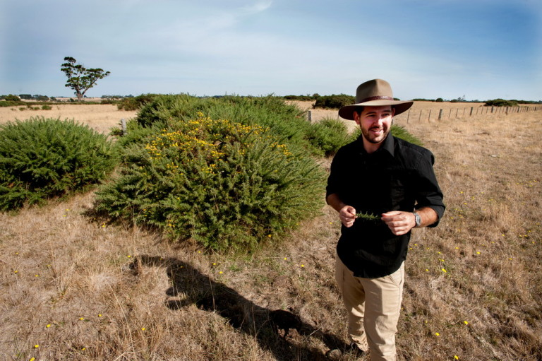Have a problem with gorse? Why not investigate funding opportunities from the Gorse Task Force.©Scheltema