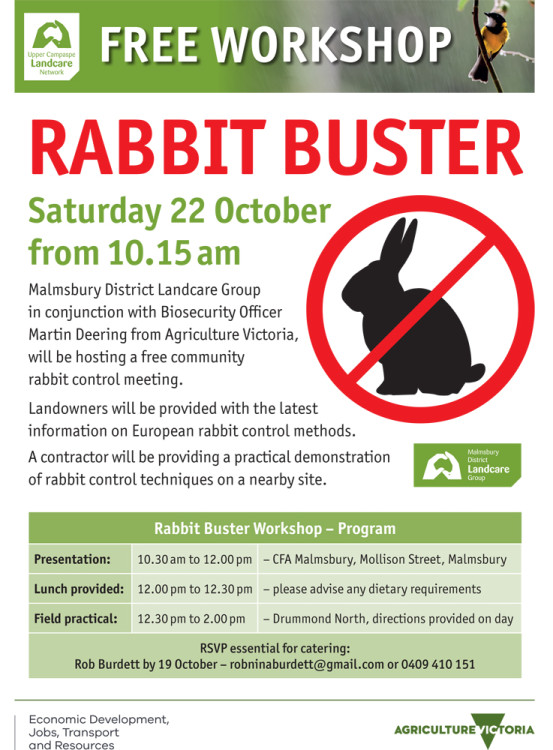 rabbit-buster-workshop-3