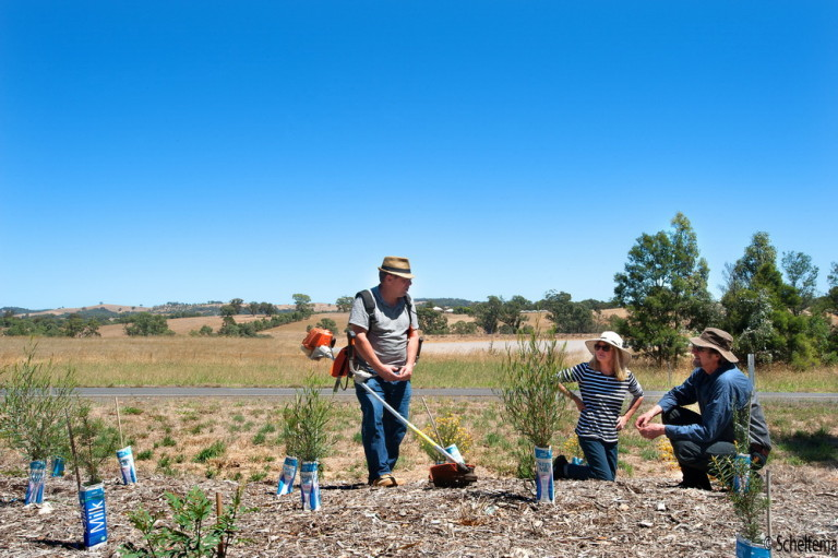 Weed warriors Phillip Don, Barbara James and John Stuwe from Campaspe Valley Landcare. Pic Scheltema